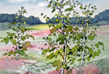 Wildflower Meadow - Pen & Watercolour - 35cm x 25cm  SOLD