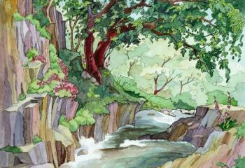 pen and watercolour 25cm x 35cm
