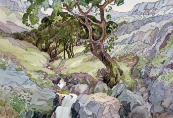 In the Rhinogs - Pen & Watercolour - 50cm x 35cm  SOLD