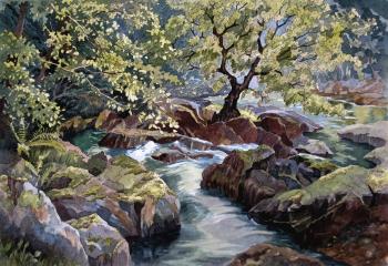 Ogwen Bank - Pen & Watercolour - 35cm x 50cm